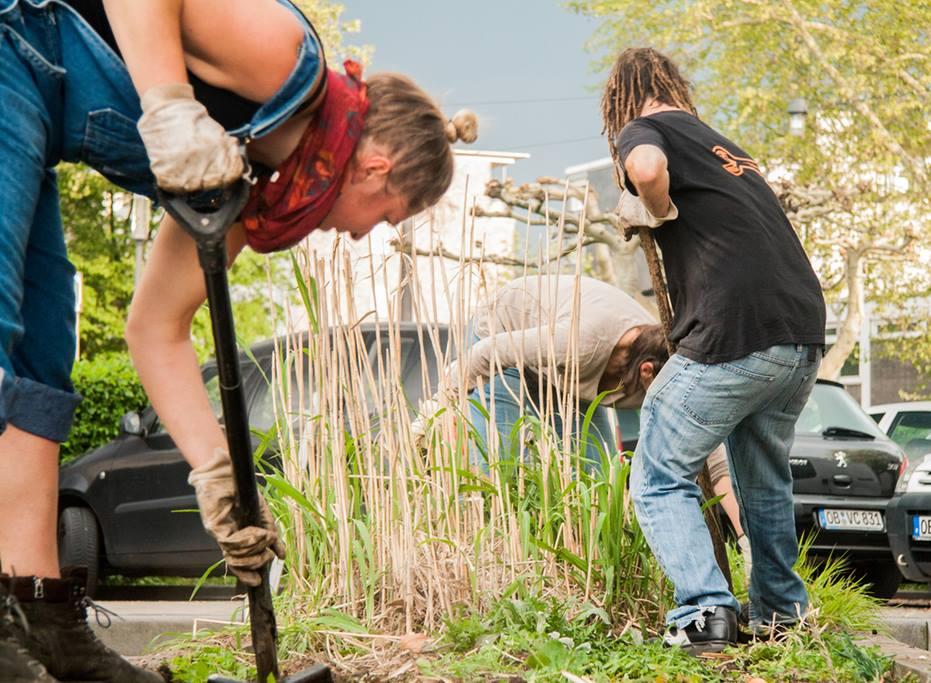 Urban Gardening © Christoph Stark