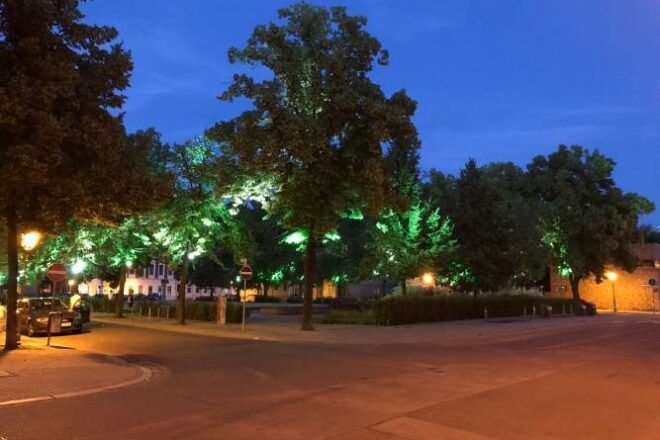 Der moritzplatz in Magdeburg am Abend mit bunten Lichtern beleuchtet
