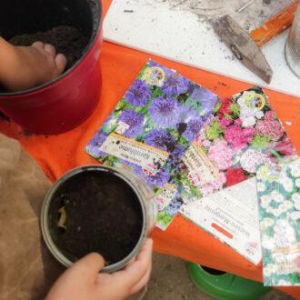 Mit Blumentöpfen, Samen und Erde werden Seedbombs hergestellt