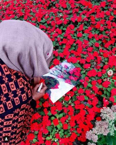 Eine Frau steht in einem leucEine Frau steht in einem leuctend roten Blumenbeet und zeichnet die Blumen ab